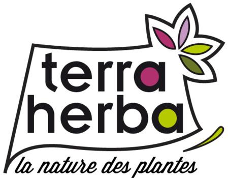 Découverte des plantes sauvages, comestibles et médicinales