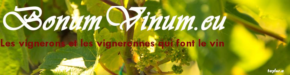Bonum Vinum, les vignerons et vigneronnes qui font le vin