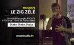 Le Zig Zélé : l'invité de Shake Shake Shake !