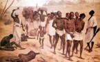 LIVE à 13h30 : De l'école au musée : l'enseignement de la traite des noirs et de l'esclavage