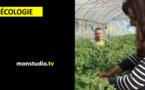 La Ferme de l'Abbatiale - Réinsertion et agroécologie à Saint Gildas des Bois