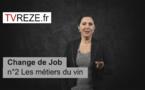 Change de job n°2 : les métiers du vin