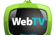 Réunion de travail - en vue de la préparation d'une journée thématique sur les WebTV, le 7 juin à Nantes