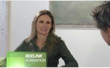 Beelink Formation